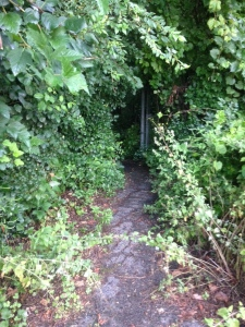 This is the secret passageway to the lake walk